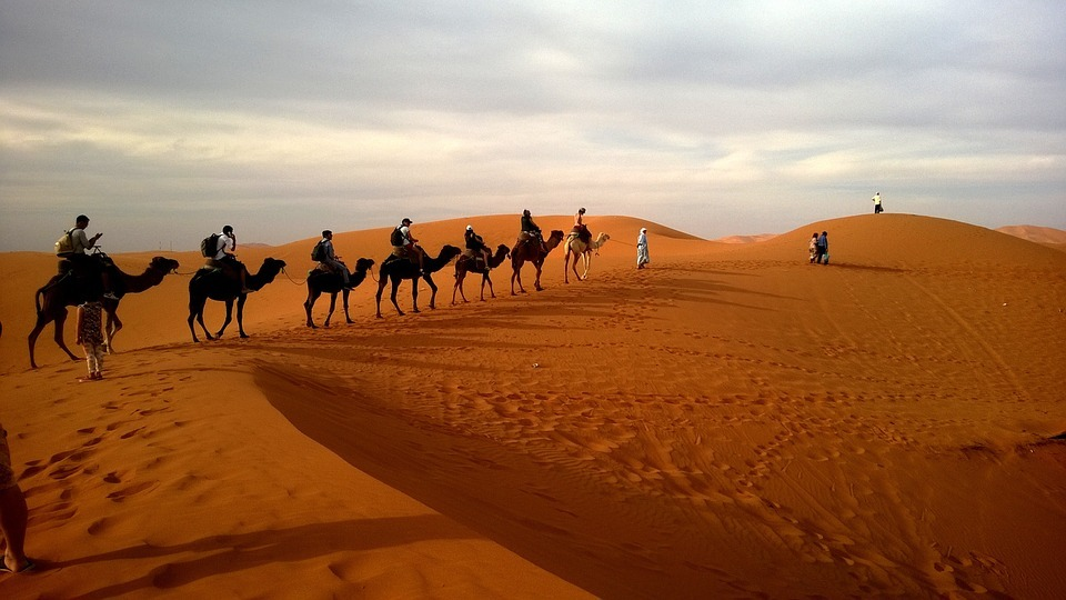 caravan-desert