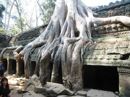 Sentier equestre en voyage a Angkor