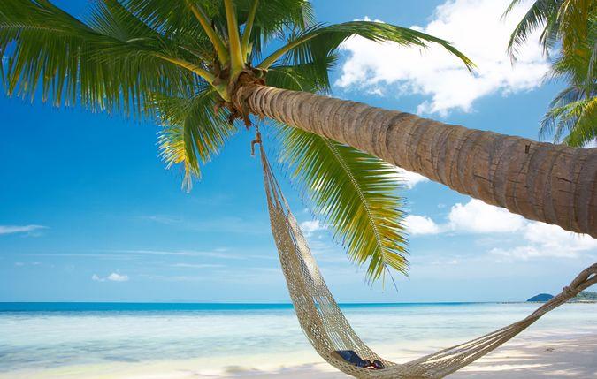La Guadeloupe ou l'île aux belles eaux est composée d'un certain nombre d'îles, y compris Grande-Terre, Basse-Terre, îles des Saintes, Marie Galante,